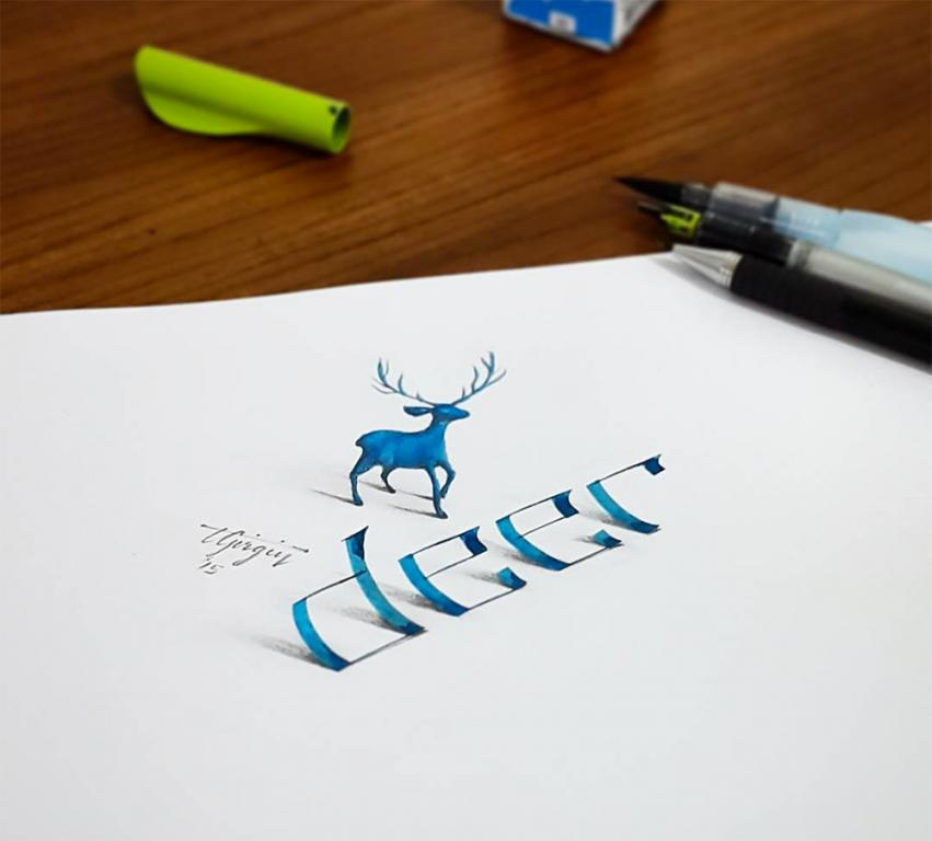 Deer by Tolga Girgin