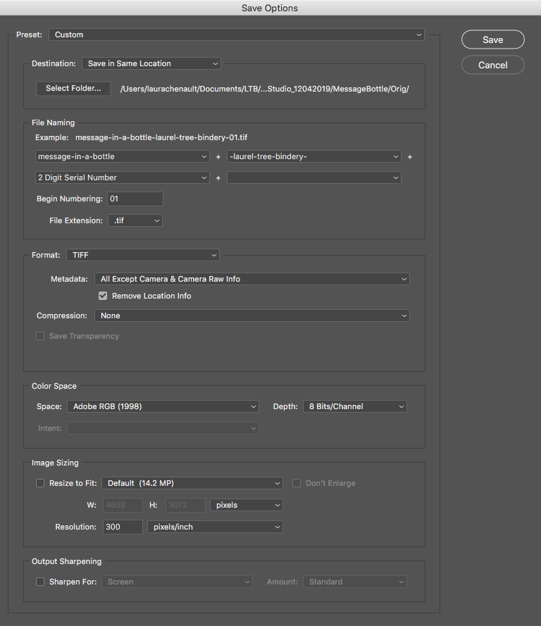Step three of how to process photos. Screen shot of photoshop showing naming conventions and automatic numbering.